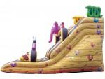 Noah's Ark Slide