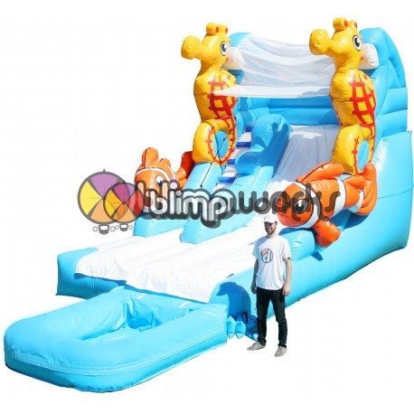 Sea Fun Slide & Pool