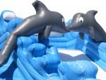 Giant Dolphin Splash